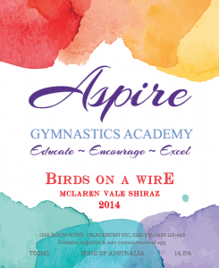 Aspire Gymnastics Academy